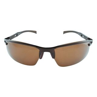 Picture of Polo House USA  Men's Sunglasses  brown (ASpPol2318brown)